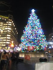 Campus Martius - Christmas tree