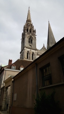 Chartres above rooftops