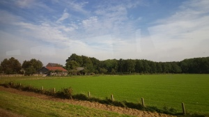 Farmland en route to Amsterdam