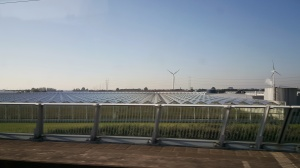 Greenhouses and windfarm en route to Amsterdam