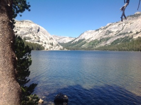 Tenaya Lake 2 - Yosemite
