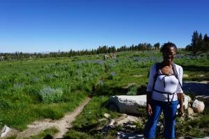 10-lakes-hike-meadow-yosemite