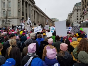 womens-march-crowd-7